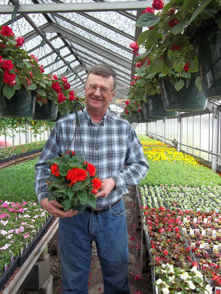 Larry Cogan, owner of Hilltop Growers, shows off one of the begonias that he and his wife started from seed at their greenhouse in Friedens.