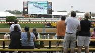 The screams of joy from Monica Lawler could be heard across the cavernous clubhouse at Pimlico shortly after the Kentucky Derby ended Saturday.