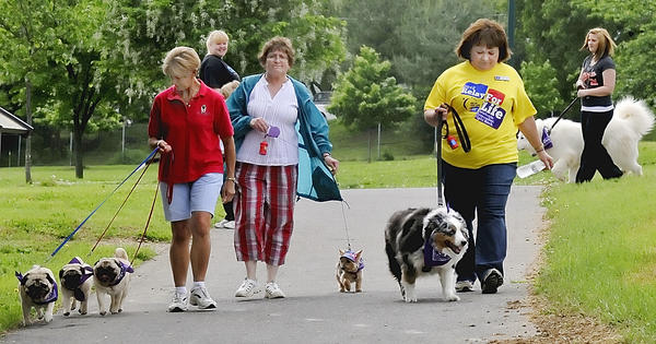 Sigi Scholle, of Falling Waters, W.Va., left, Penny Gaver of Hagerstown and Cathy Thomas of Hagerstown, walk their dogs around the track at Fairgrounds Park Sunday during at fifth annual Bark for Life of Washington County, an American Cancer Society fundraiser leading up the annual Relay for Life.