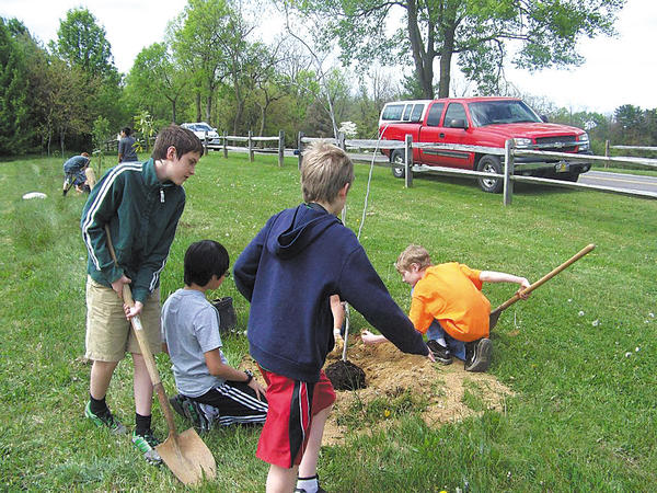 Students from E. Russell Hicks Middle School in Hagerstown planted 78 trees on the school grounds with the help of the Hagerstown Lions Club and the Maryland Forest Service.