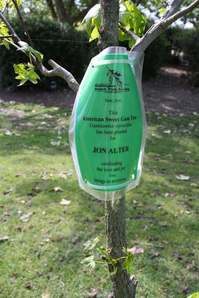 A tree in Huntington Beach's Central Park was planted in 2003 in honor of John Alter, who died in 2011.