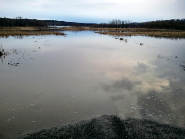 In this photo provided by K. Edward, via the Alaska Division of Homeland Security, water rises in the community of Aniak.