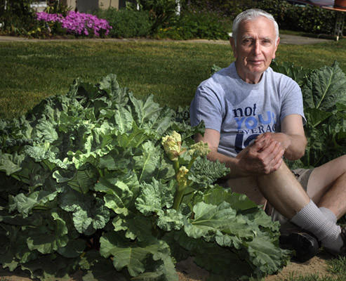 Joseph Soska, Sr. sits in his rhubarb patch in his yard. He seasons many of his meals with rhubarb.