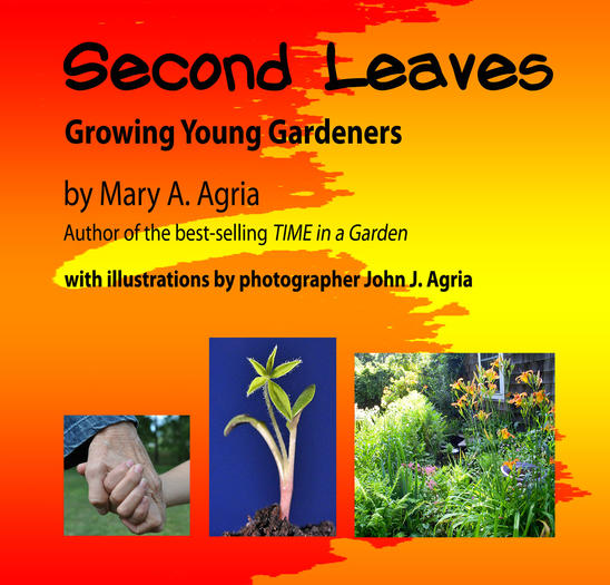Mary Agria's new book