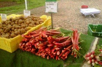 Potatoes, rhubarb and radishes are on display at Green City Market.