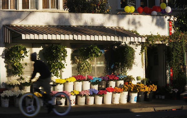 Caption: A Long Beach flower shop provides a burst of fresh color on the 5300 block of Atlantic.  (Luis Sinco / Los Angeles Times)