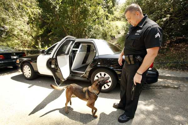 LAPD Officer Ryan Whiteman and his K-9 unit assistant, Eika, patrol Iredell Lane near the Studio City home of George Clooney.