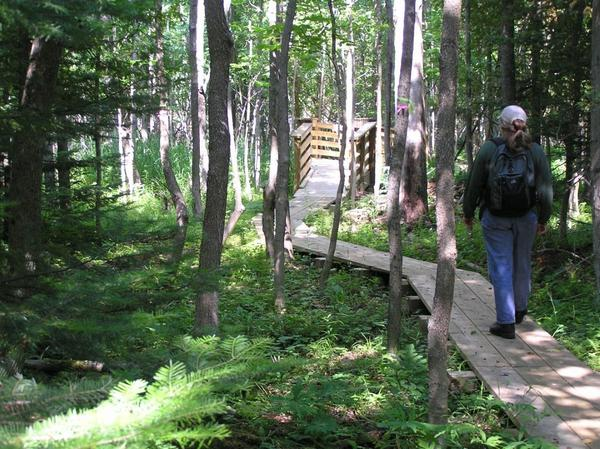 The Charlevoix County Community Foundation recently disbursed $19,500 in funds for the spring 2011 grant cycle to five area environmental organizations. Here, Cindy Mom of the Little Traverse Conservancy walks on a boardwalk that was built with foundation funds at the Susan Creek Nature Preserve.