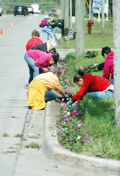 A crew from the Bergmann Center plants petunias along U.S. 31 near the northern Charlevoix city limit during Keep Charlevoix Beautiful's annual Operation Petunia planting day last year.