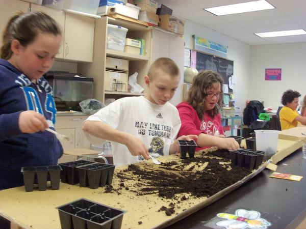 A new $20,000 greenhouse at the Shanksville-Stonycreek School District will not only produce flowers, tree saplings and tomato plants, it will also produce young entrepreneurs.