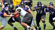 Osemele, Gradkowski focus on guard at Ravens minicamp
