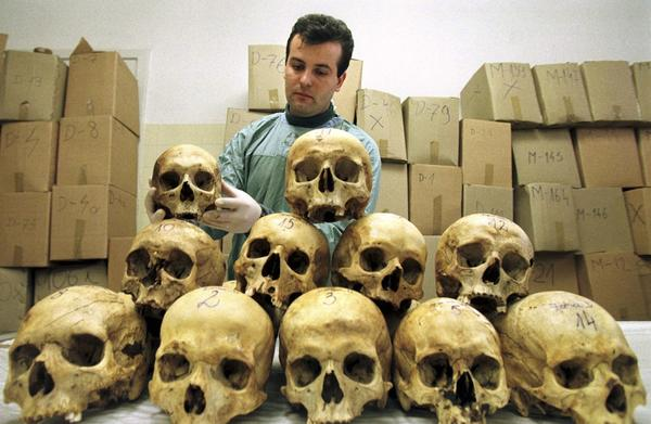 Bosnian pathologist Rifat Kesetovic as he examines skulls of victims in a hospital in Tuzla, March 28, 1997, taken from mass graves and in wooded areas following the 1995 massacre in the Moslem enclave of Srebrenica.