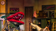 "TheatreWorks Florida's production of the  Howard Ashman-Alan Menken musical ""Little Shop of Horrors"" already has enjoyed a successful run at the Garden Theatre, so it's no wonder that it's 90-minute Fringe Festival version chugs along like a well-oiled machine."