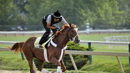 At Preakness time, a new optimism