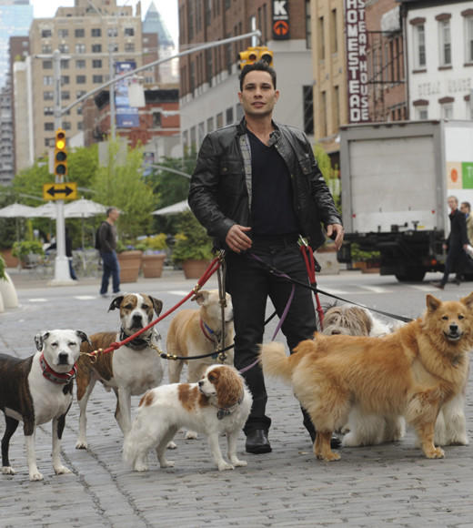 Summer TV 2012 from 'The Bachelorette' to 'Breaking Bad': Premieres: Wednesday, May 30 at 8 p.m. ET on CBS  Why were watching: A reality show about dogs? Sign us up. While wed prefer something akin to a doggie dating show (ooh, they could call it The Bachelor: Doggie Style), well watch dog whisperer Justin Silver solve peoples puppy problems. The shows being produced by CSI: Crime Scene Investigation EP Carol Mendelsohn, so one can only hope that Silver and his posse of pooches also solve crimes on the side.  -- Jen Harper, Zap2it