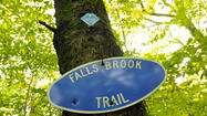 Falls Brook Trail
