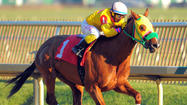 Preakness notes: Record-breaker Rapid Redux will retire