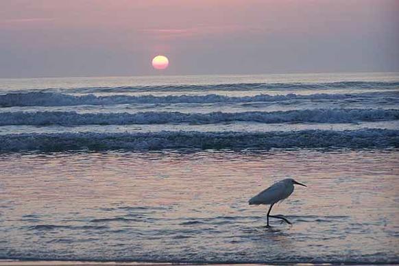 New Smyrna Beach at sunrise