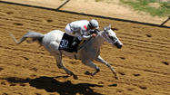 The jockey had raced an Arabian horse only once before and had never met the trainer before.