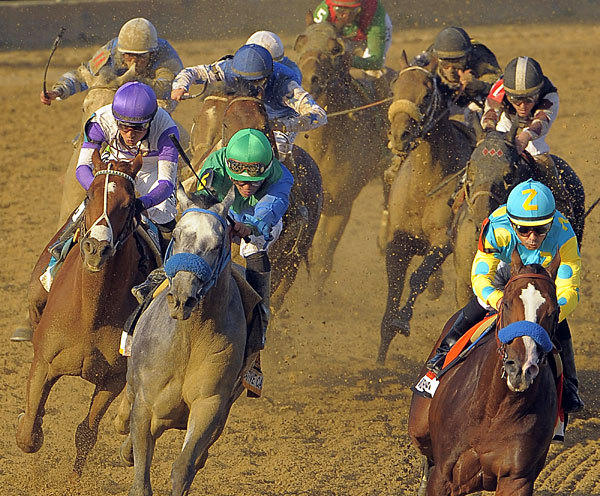 Kentucky Derby winner I'll Have Another, left, trails Creative Cause, center, and lead horse Bodemeister, right, who all pace the field heading into the final turn in the 137th Preakness Stakes at Pimlico Race Course.