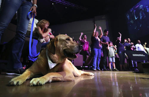 "Boomer sits at the feet of Summer Boone during the ""Dog Days"" services, at Church by the Glades, Coral Springs, for canines and their owners.   Mike Stocker, Sun Sentinel"