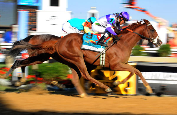 The finish of the 137th Preakness Stakes with I'll Have Another beating Bodemeister at the finish line.
