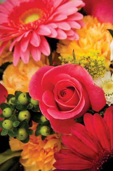 Antietam Garden Club will present a standard flower show with six arrangement categories and horticulture specimens from 1 to 4 p.m. Tuesday, May 22, at Western Maryland Hospital Center, second floor auditorium, 1500 Pennsylvania Ave., north of Hagerstown. Free. Call 301-991-9201 or email colleen47@hotmail.com.