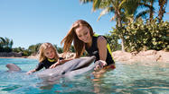 Discovery Cove, the swim-with-dolphins tropical resort, has upped its side benefits. Customers now get passes to two sister attractions -- SeaWorld Orlando theme park and Aquatica water park -- for 14 days.