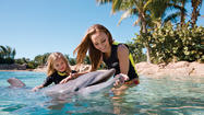 Discovery Cove: Admission now includes SeaWorld and Aquatica passes