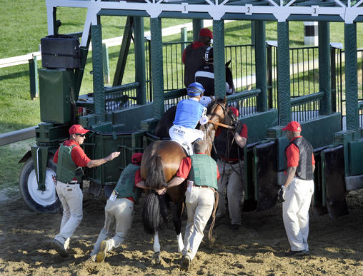 Teeth Of The Dog needs some persuasion as he approaches the #2 starting gate.