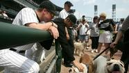 2005 Dog Day: Jon Garland pets a fan's dog