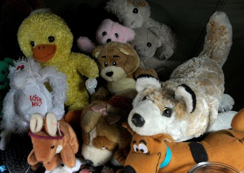 Your kids think stuffed animals are cute. Your kids' teachers do not.