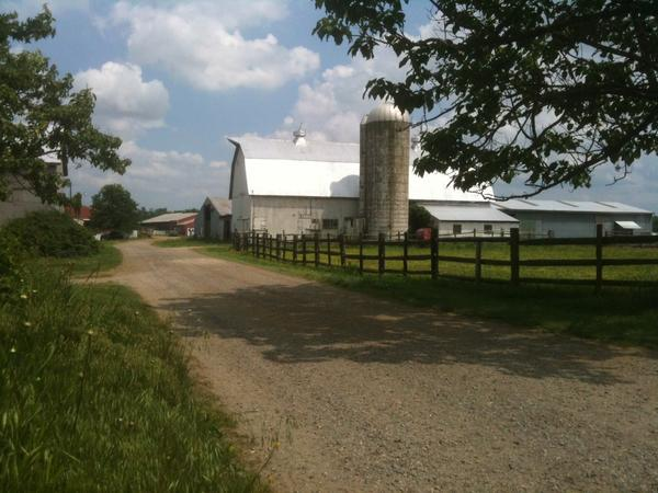 Centerdel Farm in Kennedyville, where the bodies of a Mennonite man and his two sons were found submerged in a manure pit.