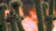 Desert wildfire threatens RV park