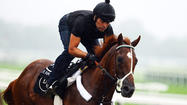 Only 30 horses have made it to the Belmont Stakes with a chance to win the Triple Crown.