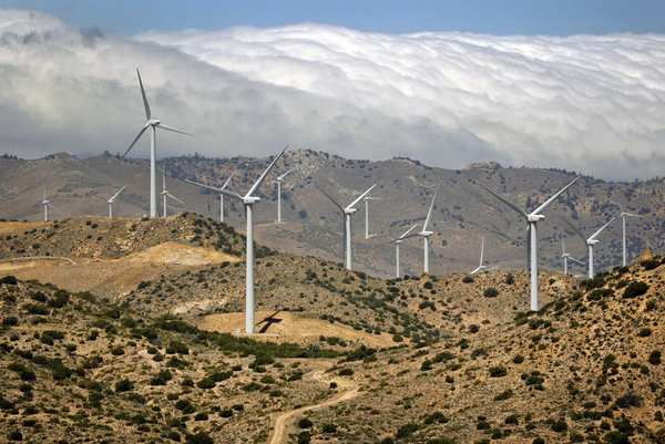 Wind turbines at the Los Angeles Department of Water and Power Pine Tree wind farm.