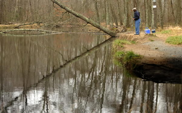 "State-led task force warns that Mattawoman Creek, one of Chesapeake Bay's healthiest tributaries, is losing ground and is ""at a turning point"" from development."