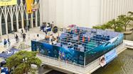 The Wildlife Conservation Society's New York Aquarium will open a new summer exhibit, <em>A-MAZE-ING Water,</em> as  part of the  celebration of World Oceans Day on June 8, 2012. The event and exhibit will run through September 9.