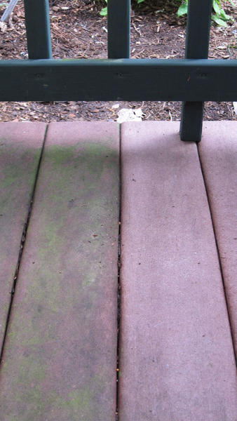 Oxygen bleach removes algae from decking boards on the right.