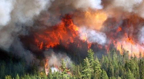 A lightning strike caused the Duck Lake fire in Michigan's Upper Peninsula. The fire burned 21,069 acres and damaged or destroyed 136 structures.