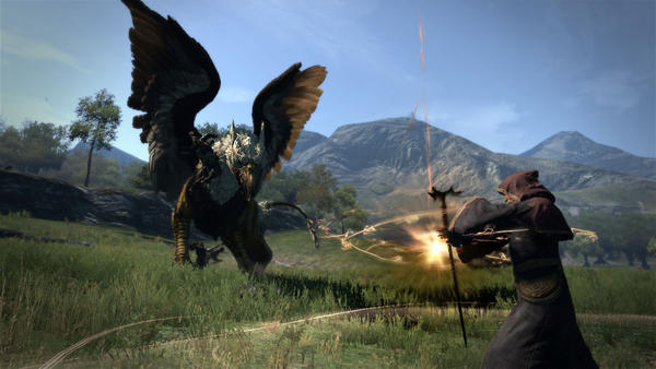 Teamwork and the 'pawn' system make 'Dragon's Dogma' a unique gaming experience.