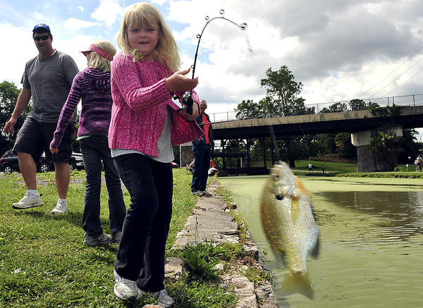 Madison Wade, 6, of Hagerstown pulls a sun fish out of the Cushwa Basin in Williamsport on Saturday while fishing in the C&O Canal Fishing Rodeo with her sister Emma Wade, 9, and father Mike Wade.