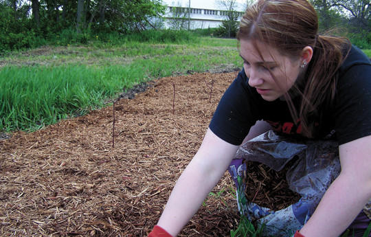 To earn her Girl Scout Gold Award, Lorisa Schoenbeck of Webster improved a local park by planting trees and dogwood bushes and placing two benches. She said she wanted to create a family-friendly space.