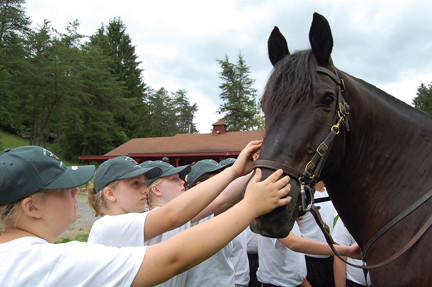 Fulton County (Pa.) Camp Cadet participants pet Joker, a 14-year-old Percheron used in the Pennsylvania State Police's mounted patrol unit. He was ridden Monday by Trooper Tim Harsh at Camp Sinoquipe in Fort Littleton, Pa.