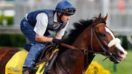 Before trainer Michael Matz can find out if Union Rags will get the clean trip he failed to get at the Kentucky Derby, the promising colt must hope for some luck with traffic.