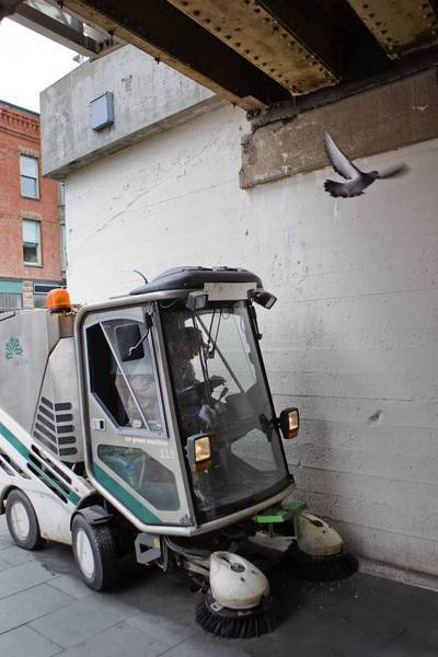 A pigeon is startled by a sidewalk sweeper under the Marion Street viaduct in Oak Park. The vehicle was cleaning pigeon feces from the sidewalk. The village will consider a plan to euthanize the nuisance birds.