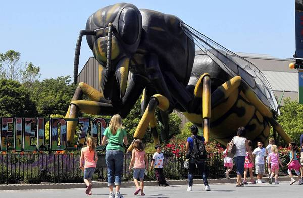 Visitors walk past a giant bee as they experience the invasion of Xtreme Bugs at Brookfield Zoo.