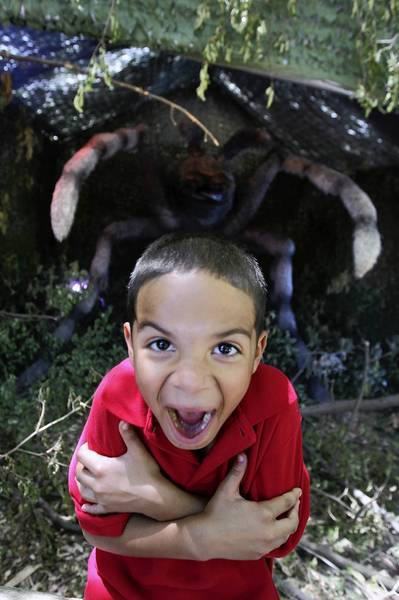 Gavin Clark, 7, playfully poses for his teacher near a giant tarantula as he enjoys the experience at the invasion of Xtreme Bugs at Brookfield Zoo.