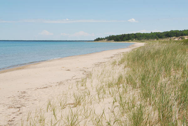 A Petoskey-based environmental advocacy group opposes attempts in Lansing to weaken Michigan's critical dune area protection laws.