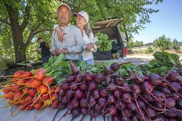 Shu and Debby Takikawa at their home farm in Santa Ynez, with freshly harvested Merlin and Red Ace beets.